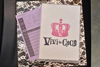 vivi-file2